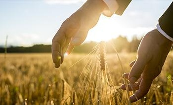 agricoltura1-1