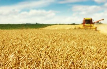 agricoltura-1