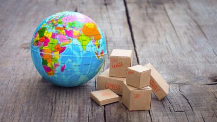 La procedura di gestione delle importazioni