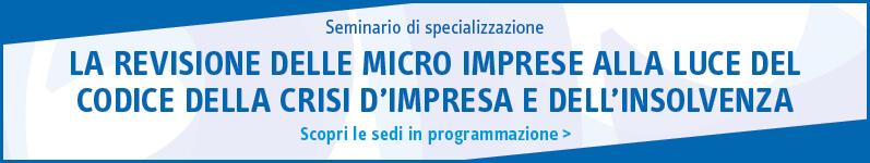 La revisione delle micro imprese alla luce del codice della crisi d'impresa e dell'insolvenza