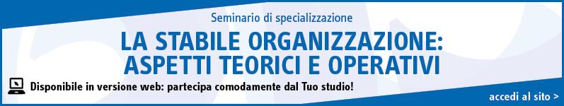 La stabile organizzazione: aspetti teorici e operativi